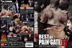 [DDSC-020] BEST OF PAIN GATE 2 スクラム その他SM